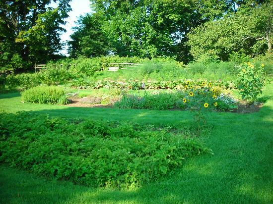Hollister Hill Farm B&B: Vegetable Garden
