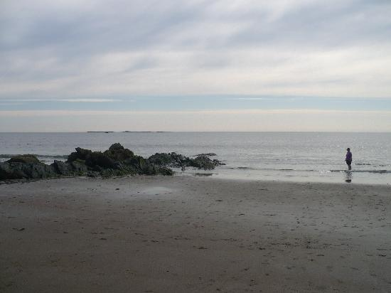 White Lamb Cottages: The beach