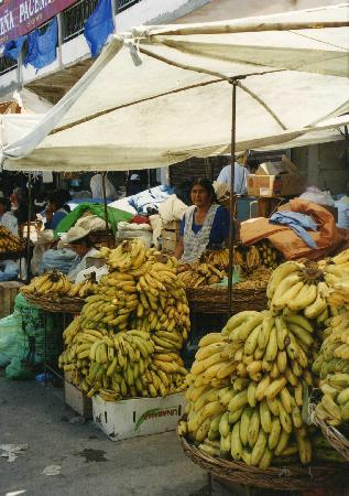 Tarija, Bolivia: A stand on the Mercado Campesino