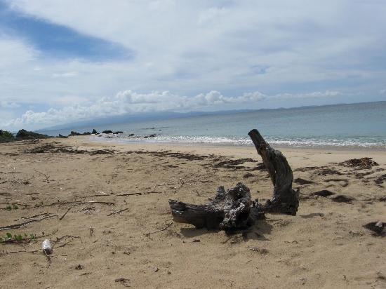Casa de Amistad: Playa Gallito (Gringo Beach)