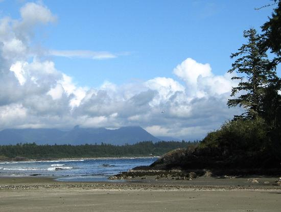 Radford's Bed and Breakfast : Pacific Rim NP, Vancouver Island