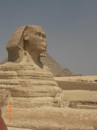 Sea World : sphinx