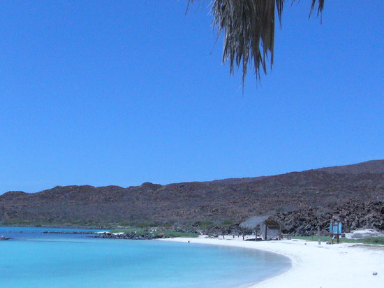 Baja Outpost: beach near Loreto
