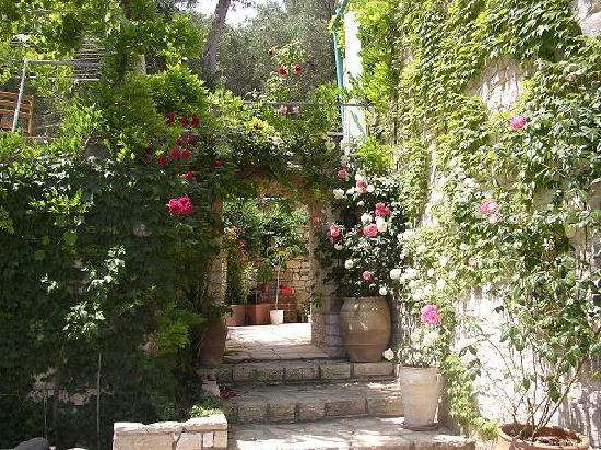 Zakspitaki B&B: Entrance with roses