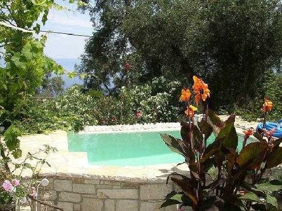 Zakspitaki B&B: plunge pool