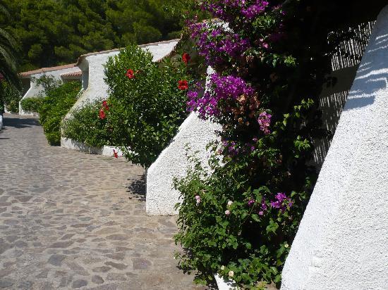 Li Cucutti Village : Villaggio