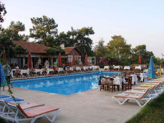 Silver Pine Hotel: Pool area