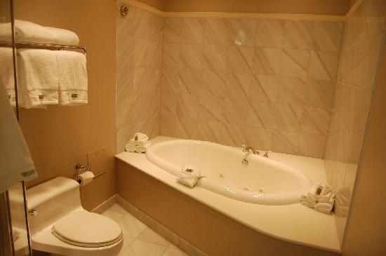 The Westin Columbus: Big Bathroom!