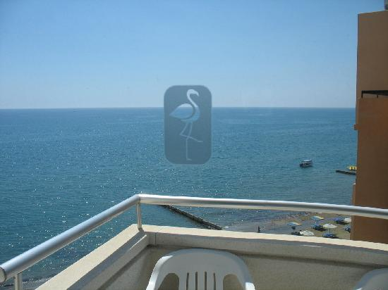 Flamingo Beach Hotel: view from room