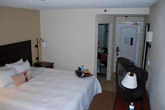 Hampton Inn Ft. Lauderdale - Cypress Creek: standard king room