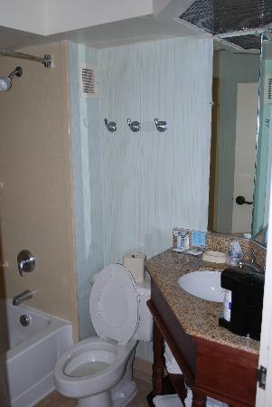 Hampton Inn Ft. Lauderdale - Cypress Creek: bathroom