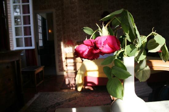 Chateau du Plessis Loiret : Roses