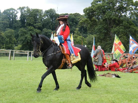 Oldbridge Estate/Battle of the Boyne Visitors Centre: The King on horseback
