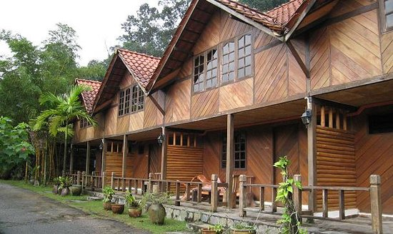 Kota Rainforest Resort : The wooden chalet