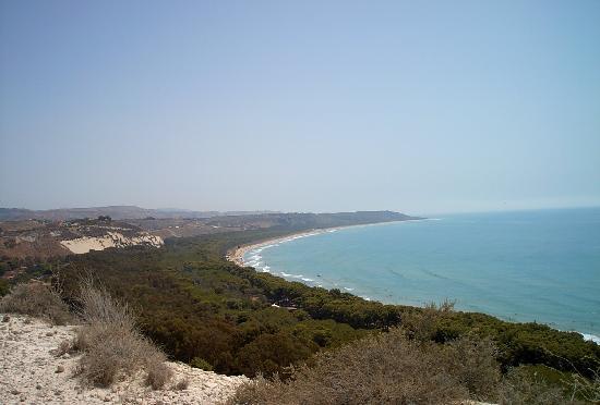 Cattolica Eraclea, อิตาลี: spiaggia+pineta