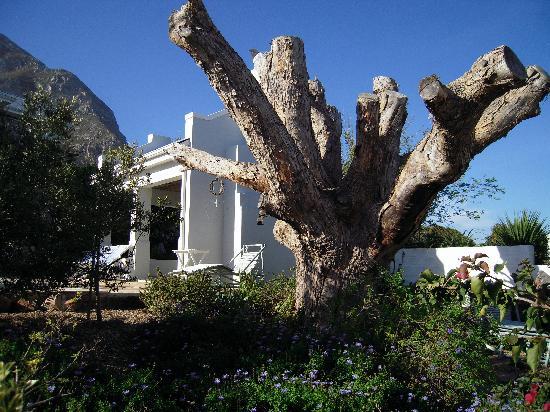 Villa Blu 사진