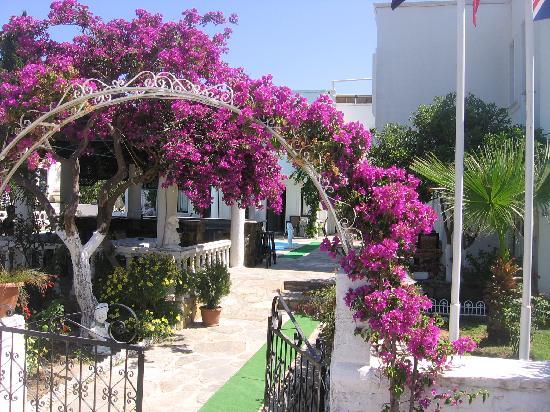 Miray Hotel: entrance