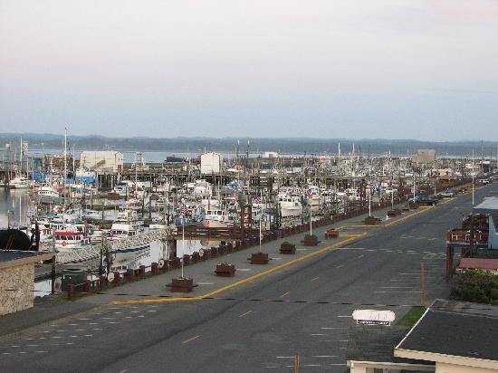 Alaskan Motel: Westport