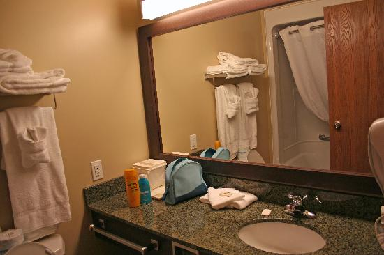 Best Western Plus Saint John Hotel & Suites: The bathroom