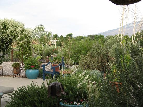 Corrales, Nuevo Mexico: A View from the Patio