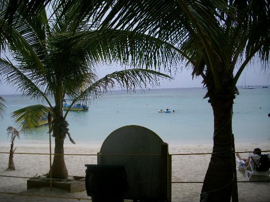 Bananarama Beach and Dive Resort : view from bar area to ocean