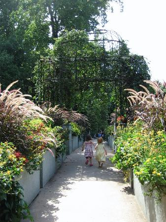 Atlanta, GA: Bridge between the Kids Gardens, and the main gardens