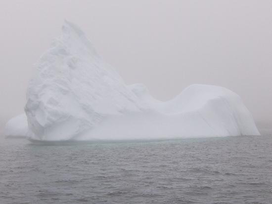 Quirpon Lighthouse Inn: Ice - anyone?