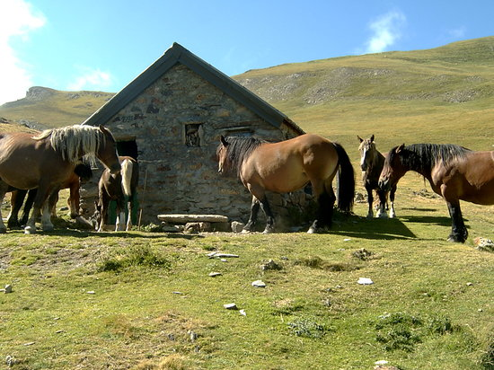 Midi-Pyrnes, Prancis: the sheppards hut I stayed in over night :)