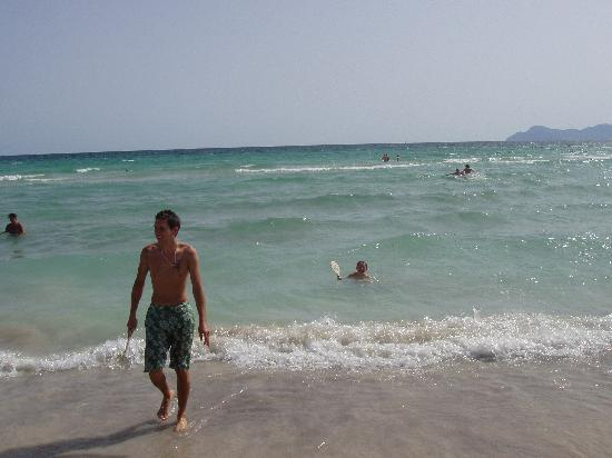 Prinsotel La Dorada: nearby beach