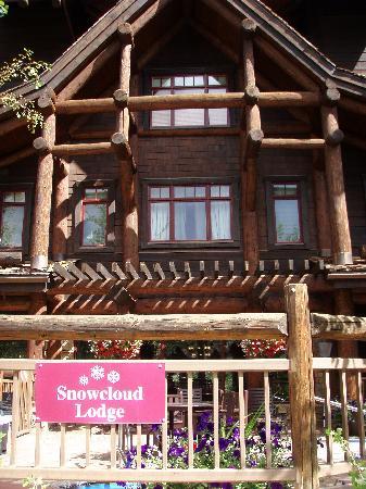 Snow Cloud Lodge : hot tub