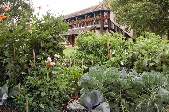 La Ferte-Saint-Aubin, Frankreich: view that hotel from behind the small vegetable garden