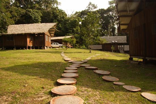 Lope Wildlife Reserve, Gabun: Mikongo Camp