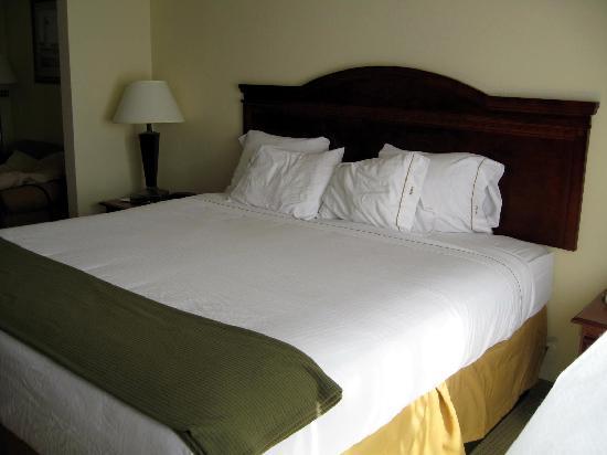 La Quinta Inn & Suites Norwich-Plainfield-Casino : plush king bed