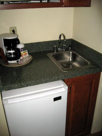 La Quinta Inn & Suites Plainfield: wet bar