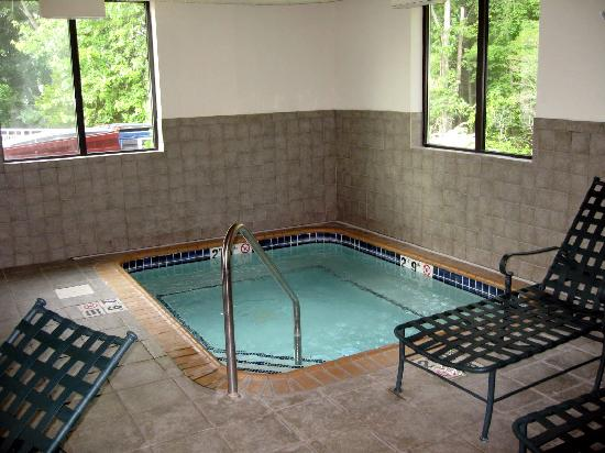 Holiday Inn Express Plainfield: hot tub (spa)