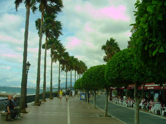 El Rodeo : Marbella boulevard