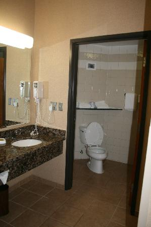 Drury Inn & Suites Lafayette : Bathroom