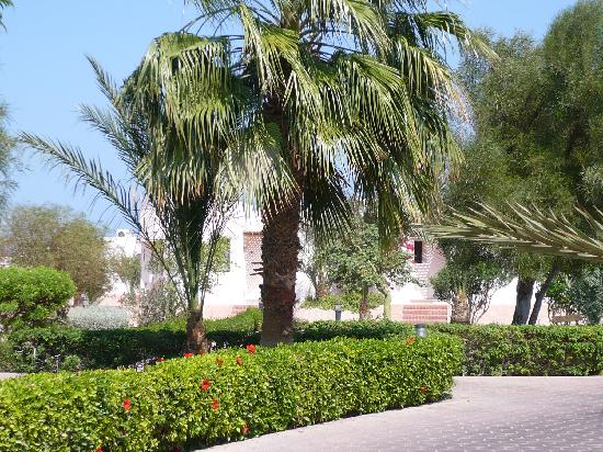 Sonesta Pharaoh Beach Resort Hurghada: Villa and Garden