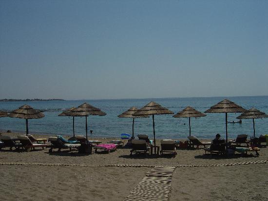 Rodos Sun: Faliraki Beach