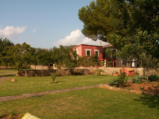 Agroturismo Alfatx: View from the pool