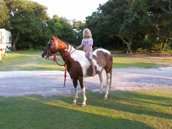 Teeter's Campground and Horse Rides