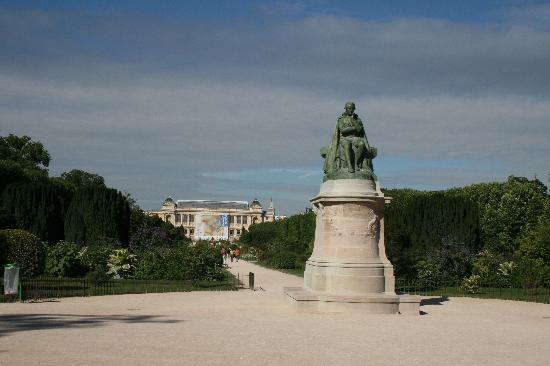 Paseo central picture of jardin des plantes paris for Plantes paris