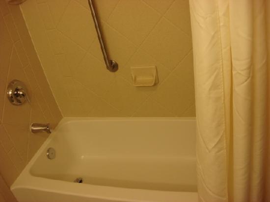Hampton Inn & Suites Cincinnati Union Centre: Bathroom 2