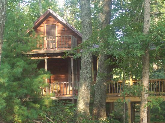 Beau Natural Bridge State Resort Park: Our Cabin In The Woods