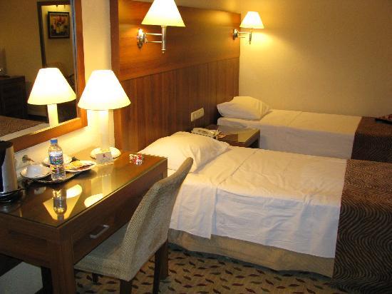 Hotel Villa Zurich: hab1
