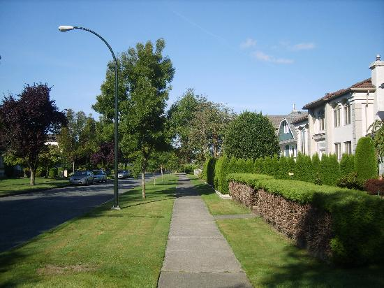 Vancouver Traveller Bed and Breakfast: The street