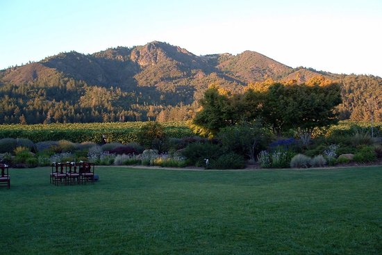 St. Francis Winery and Vineyards : Ceremony Site