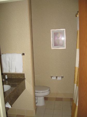 Fairfield Inn & Suites Temecula: Bathroom.