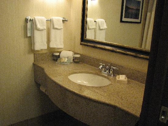 Hilton Garden Inn Kalispell: High End Bathroom Fixtures
