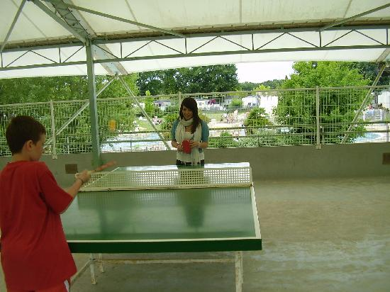 Castel Parc de Fierbois : Ping Pong (kids loved it)